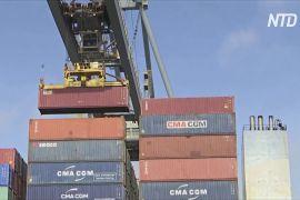 СОТ переглянула прогноз темпів зростання світової торгівлі товарами на 2021 рік