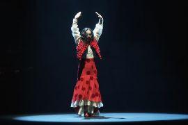 Фестиваль фламенко в іспанському місті Херес-де-ла-Фронтера святкує 25-річчя