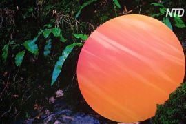 Унікальні кольори, створені природою, показали на виставці в Лондоні