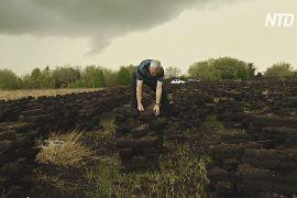 Заготівля торфу в Ірландії: чи можна врятувати давню традицію