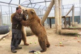 Француз витратив 25 млн євро на притулок для циркових і піддослідних тварин