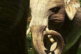 У лондонських парках з'явилося 100 фігур слонів