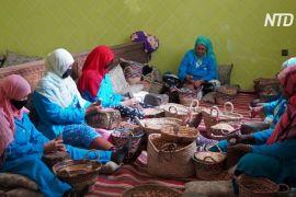 «Рідке золото»: як берберські жінки роблять арганову олію