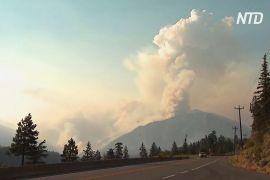 У Канаді палає близько 200 лісових пожеж