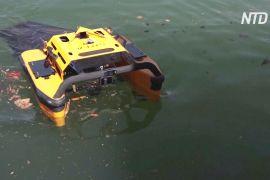 Новий робот-медуза «їсть» сміття на поверхні моря