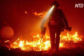 В Орегоні палає велика лісова пожежа