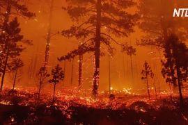 «Нічого не залишилося»: пожежа в Орегоні знищила десятки будинків