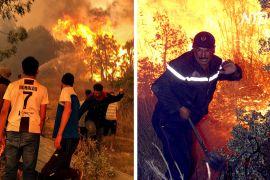 «Ми втомилися»: алжирці гасять пожежі голими руками