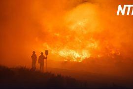 Іспанія намагається стримати найбільші в цьому році пожежі