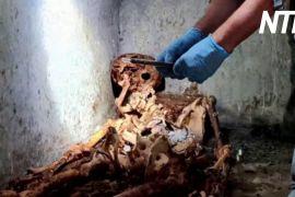 Останки колишнього раба розкривають таємниці життя Помпеїв