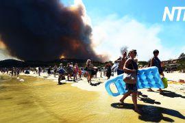 Пожежа біля Лазурового берега увійшла до п'ятірки найбільших за століття