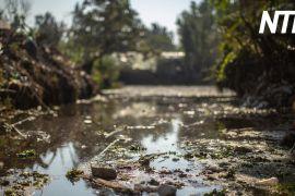 Канали Сошимілко в Мехіко очищають бульбашками повітря