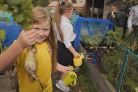 У Шотландії садівництво допомагає людям віднайти душевну рівновагу
